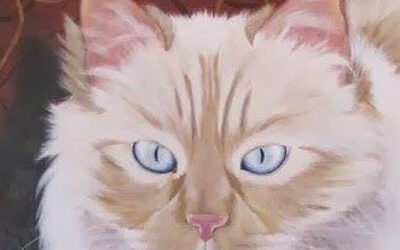 Pintando gatos. Vanesa Soto