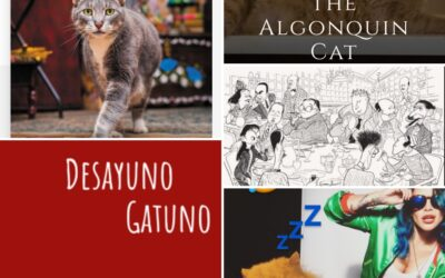 Podcast Lenguas de Gato. Programa 7